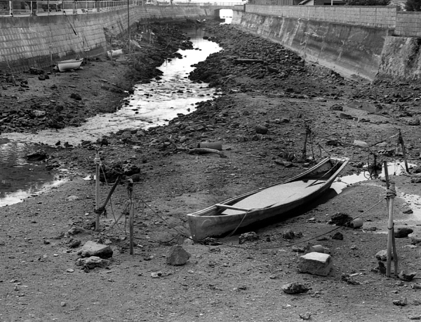 Oki-canoe Photograph by Curtis J Neeley Jr