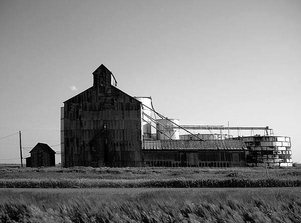 Oklahoma I I Photograph by Cameron Hampton P S A