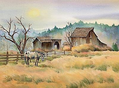Field Painting - Old Barn And Appaloosa Horse by Sharon Sharpe