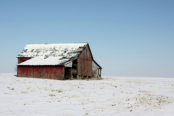 Agriculture Photograph - Old Barn And Snowy Prairie by Alan Look