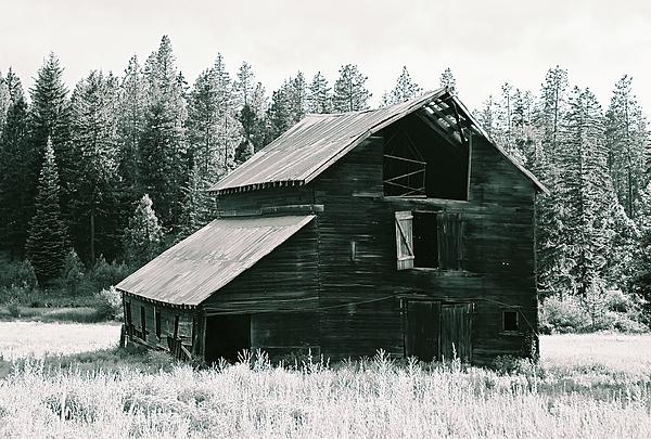 Old Barn Photograph by John Danforth