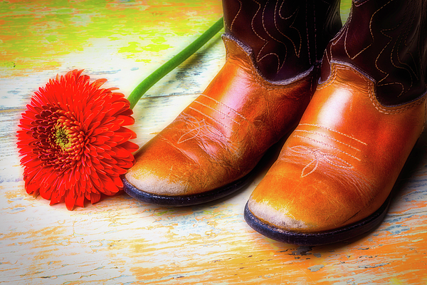 Mood Photograph - Old Boots And Daisy by Garry Gay