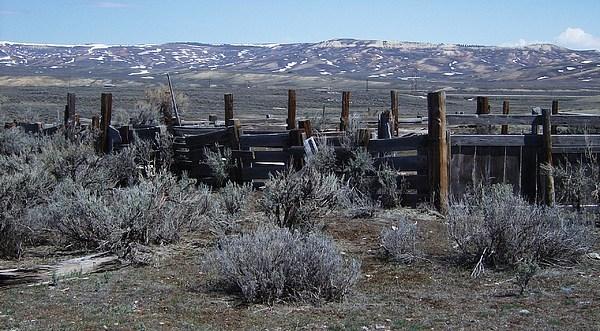 Landscape Photograph - Old Corral by Susan Pedrini