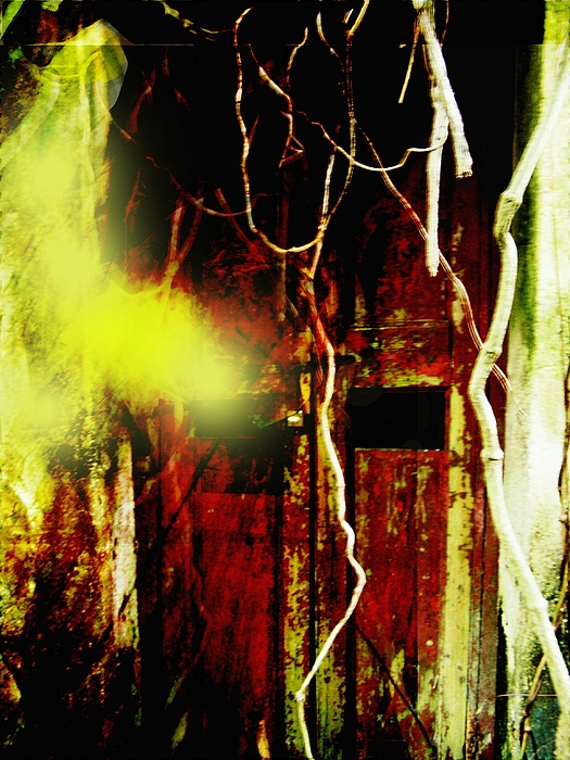 Ghost Photograph - Old Door Ghost Halloween Scary Card Print by Kathy Daxon