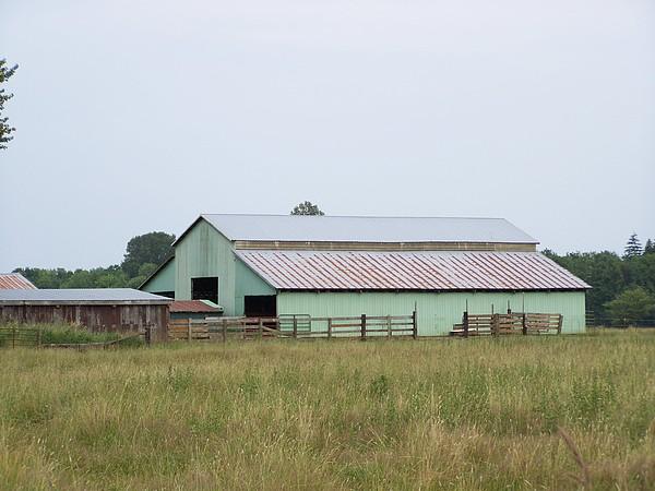 Barn Photograph - Old Green Barn    Washington State by Laurie Kidd