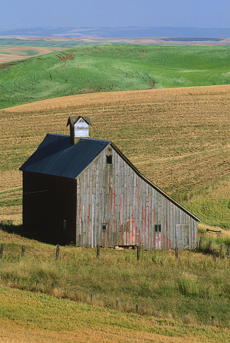 Palouse Photograph - Old Palouse Barn by Sandra Bronstein