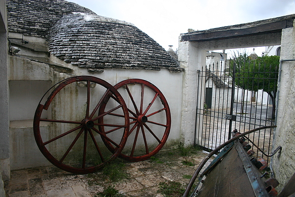 Old Wagon Wheels Photograph - Old Wagon Wheels by Dennis Curry