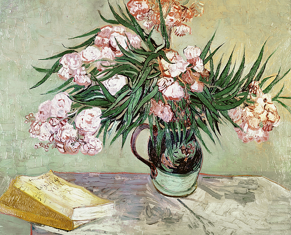 Vincent Van Gogh Painting - Oleanders And Books by Vincent van Gogh