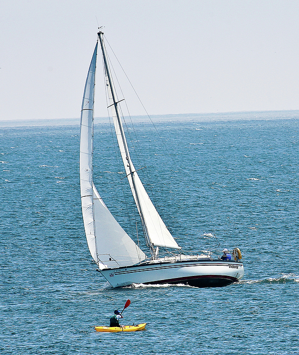 Sailboat Photograph - On The Bay by Liz Santie