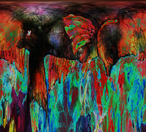 Wild Mixed Media - On The Wild Side by Sue Duda