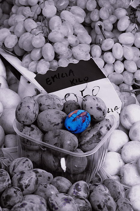 Food Photograph - One Blue Plum by Michael Henderson