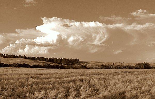 Plains Photograph - Open Range by Jimmy Poor