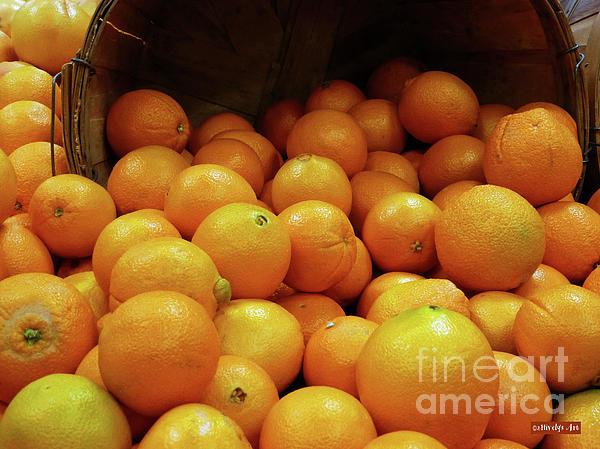 Orange Photograph - Orange Basket by Methune Hively