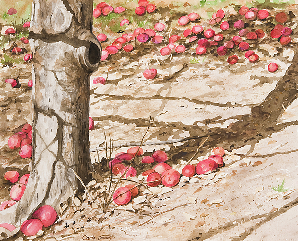 Apples Painting - Orchard Afternoon by Carla Dabney