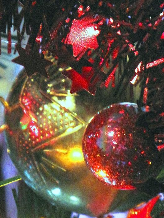 Ornaments Photograph - Ornaments by Ian  MacDonald