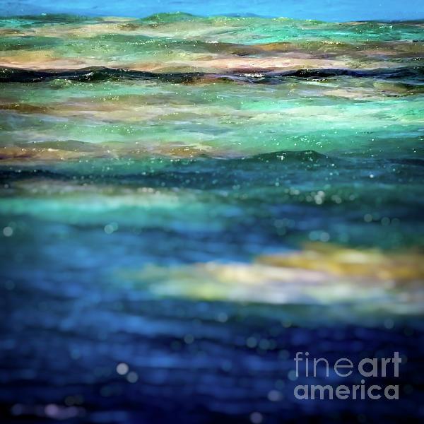 Osprey Reef Photograph - Osprey Reef by Doug Sturgess