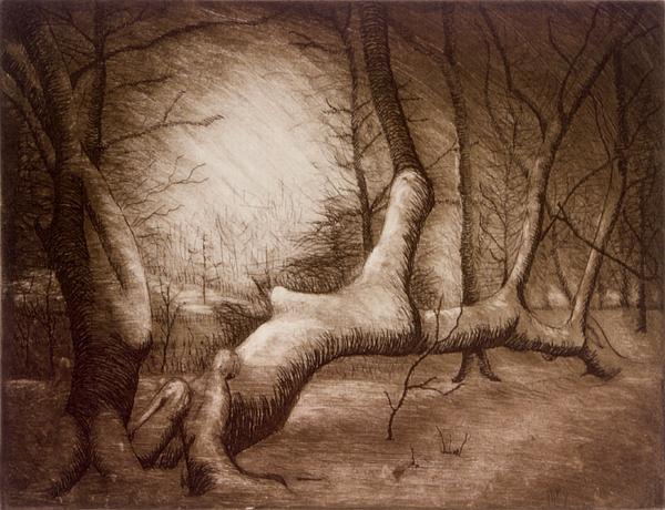 Fallen Tree Painting - Otsiningo Park Binghamton Ny by John Clum