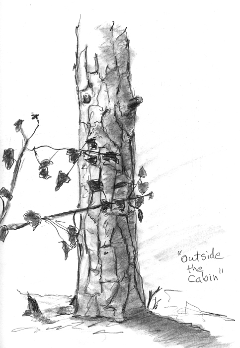 Tree Drawing - Outside The Cabin by Kevin Callahan