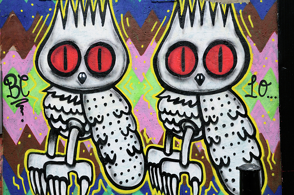 Graffiti Photograph - Owls Graffiti  by Liz Pinchen