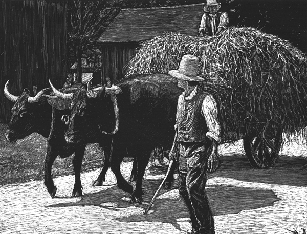Early American Drawing - Ox-driven Haycart by Robert Goudreau