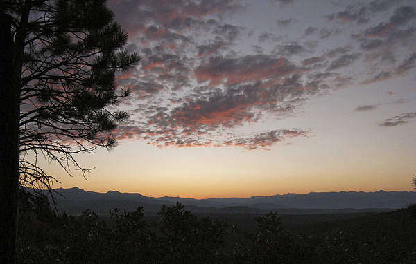 Pagosa Springs Photograph - Pagosa Sunset by Juliana Conley