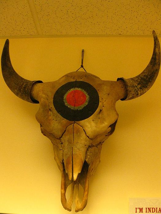 Alchemy Sculpture - Painted Bison Skull by Austen Brauker