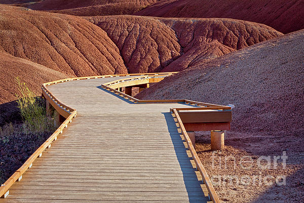 Arid Photograph - Painted Hills Boardwalk by Jerry Fornarotto