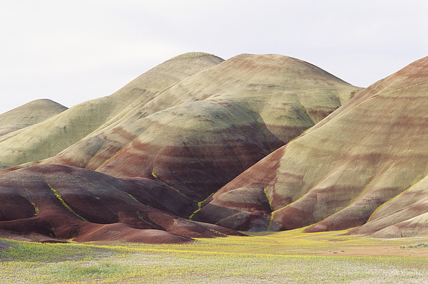 Banded Photograph - Painted Hills by Greg Vaughn - Printscapes
