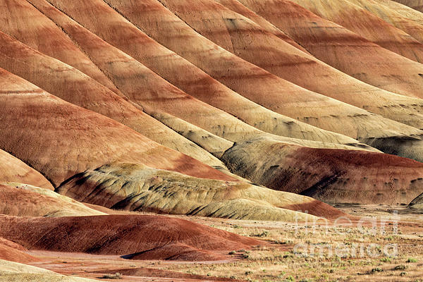 Arid Photograph - Painted Hills Textures by Jerry Fornarotto