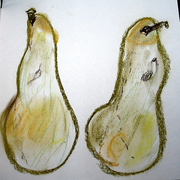Pears Drawing - Pair Stretch by Linda DiGusta
