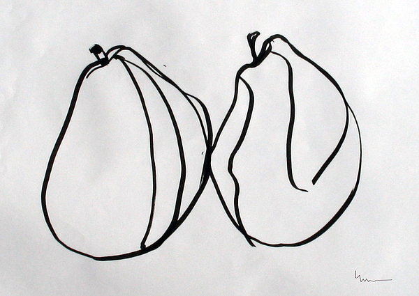 Pair Study - Comice Drawing by Linda DiGusta