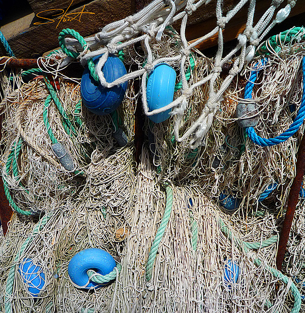 Fishing Net Photograph - Pale Blue Rider by Charles Stuart