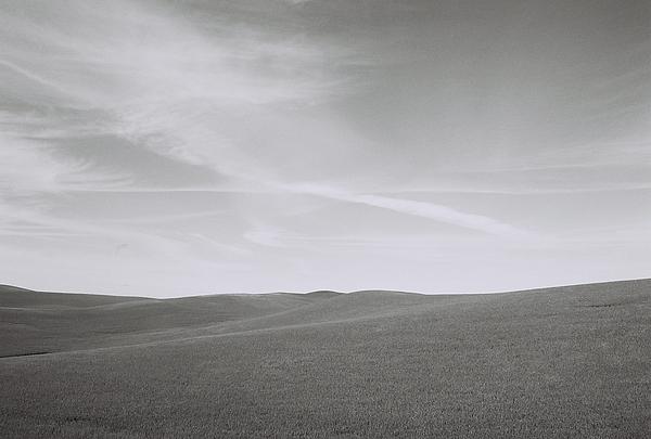 Palhouse Field Photograph by John Danforth