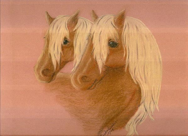 Horse Drawing - Paliminos by ShadowWalker RavenEyes Dibler