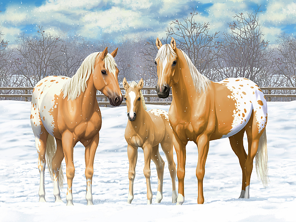 Appaloosas Painting - Palomino Appaloosa Horses In Winter by Crista Forest