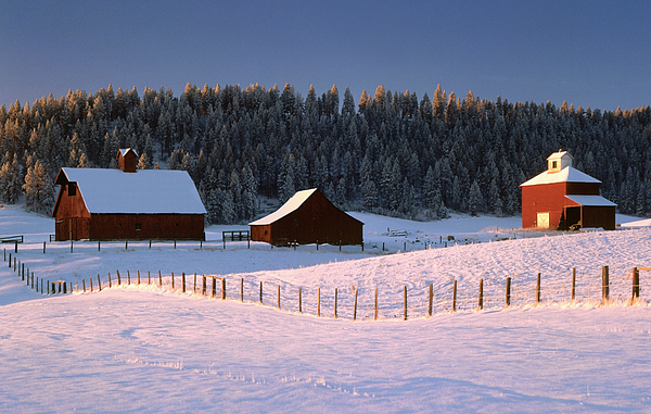 Palouse Photograph - Palouse Winter by Jerry McCollum