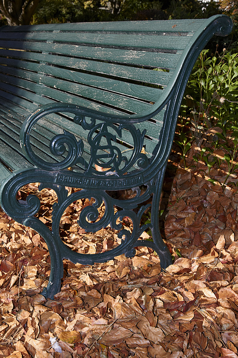 Park Photograph - Park Bench In Autumn by Geoff Bryant