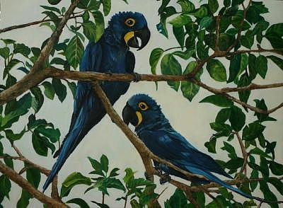 Parrot Duo Painting by Gloria Apfel