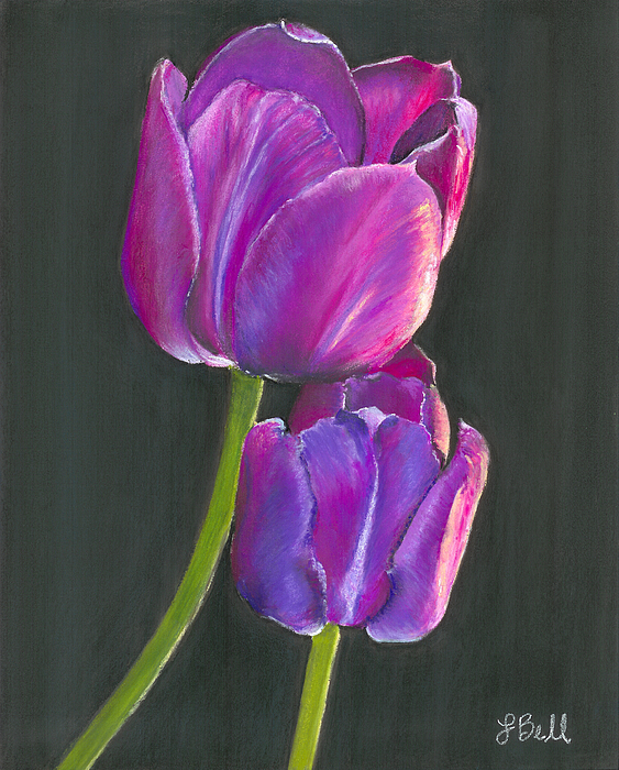 Tulip Painting - Passion  by Laura Bell