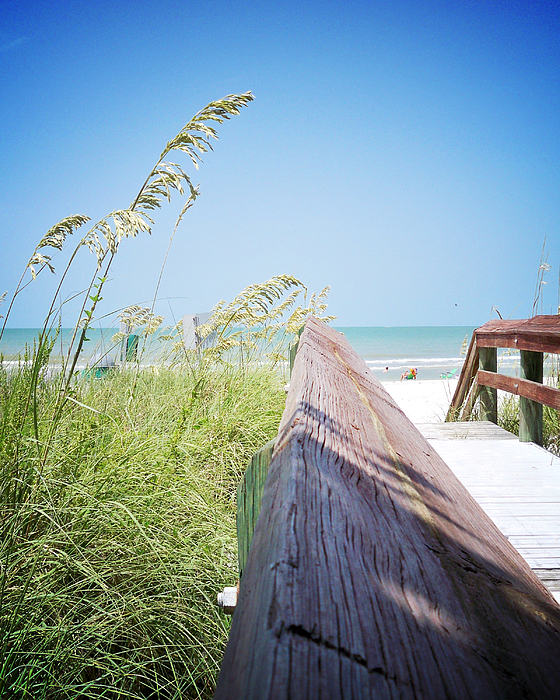 Florida Photograph - Path To Relaxation Vanilla Pop by Chris Andruskiewicz