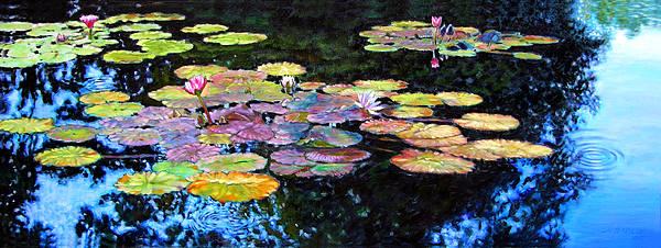 Water Lilies Painting - Peace Among The Lilies by John Lautermilch