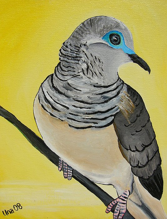 Bird Painting - Peaceful Dove  by Una  Miller