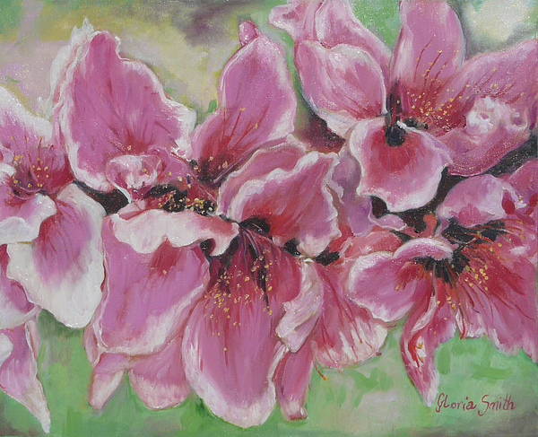 Peach Blossoms Painting - Peach Blossoms by Gloria Smith