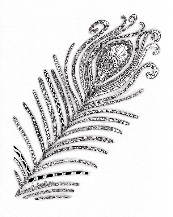 Peacock Drawing - Peacock Feather by Paula Dickerhoff