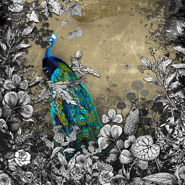 Peacock Mixed Media - Peacock Pop Up Book Illustration by Carly Ralph