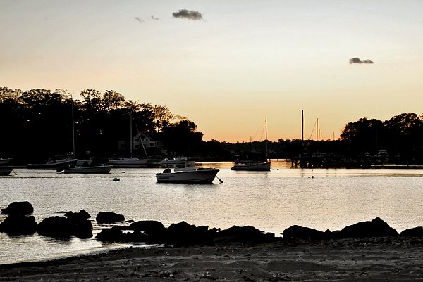 Sunset Photograph - Pear Tree Point by Laura DAddona