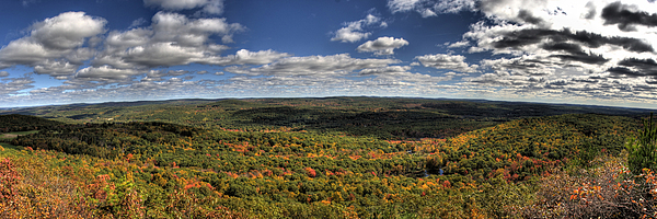 Autumn Photograph - Peeking Autumn by Nicholas Damario