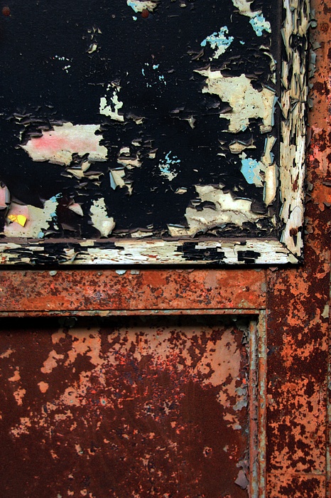 In Focus Photograph - Peeling Paint by Joanne Coyle