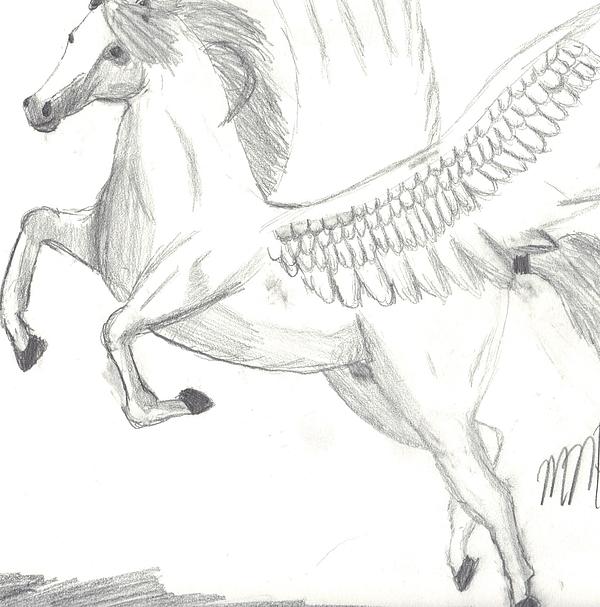 Pegasus Drawing - Pegasus by Maddi Pollihan