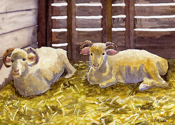 Sheep Painting - Pen Pals by Sharon E Allen